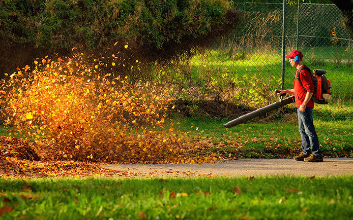 Leaf blowing the yard