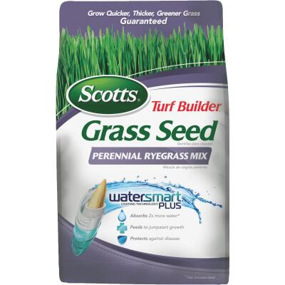 Scotts Turf Builder 3 Lb. Up To 1250 Sq. Ft. Coverage Perennial Ryegrass Grass Seed